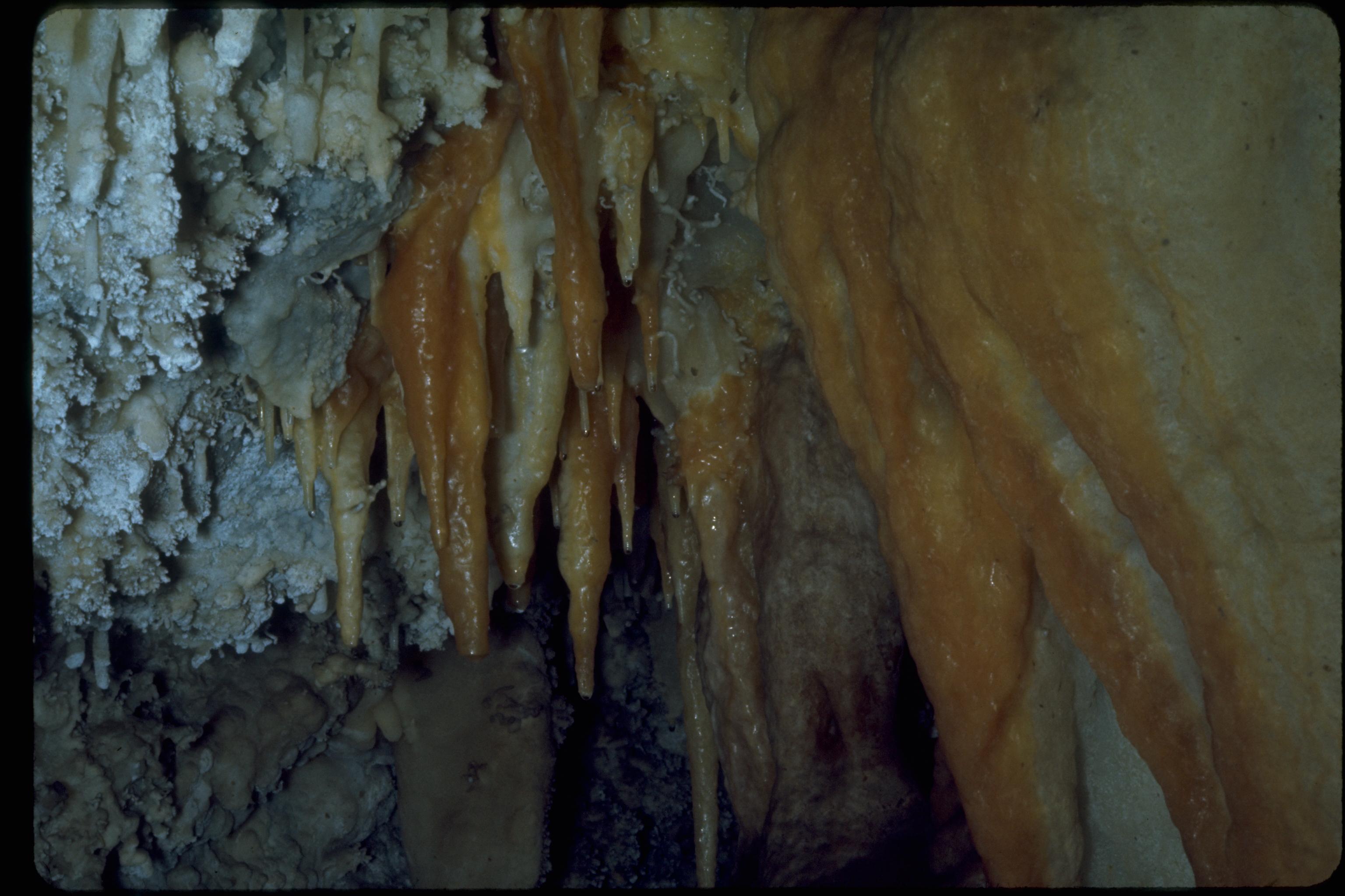 listings timpanogos cave national monument
