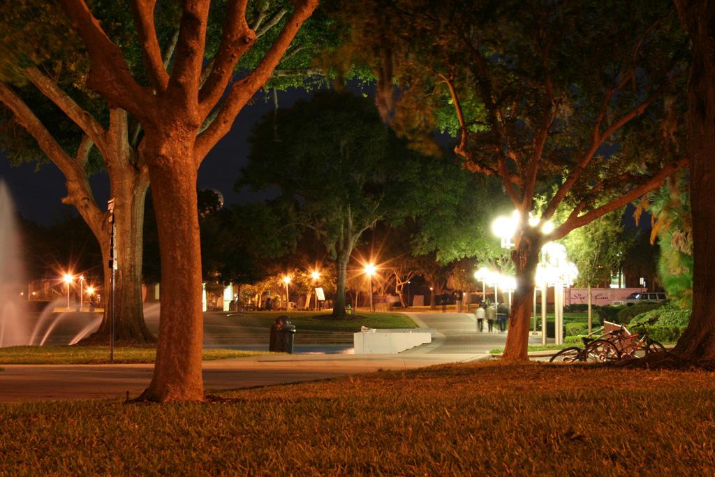 Description UCF Campus Night jpgUcf Campus Pool