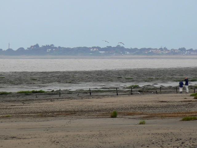 A beach near Steart and Stert Flats - geograph.org.uk - 918753