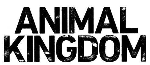 Animal Kingdom (TV series) - Wikipedia