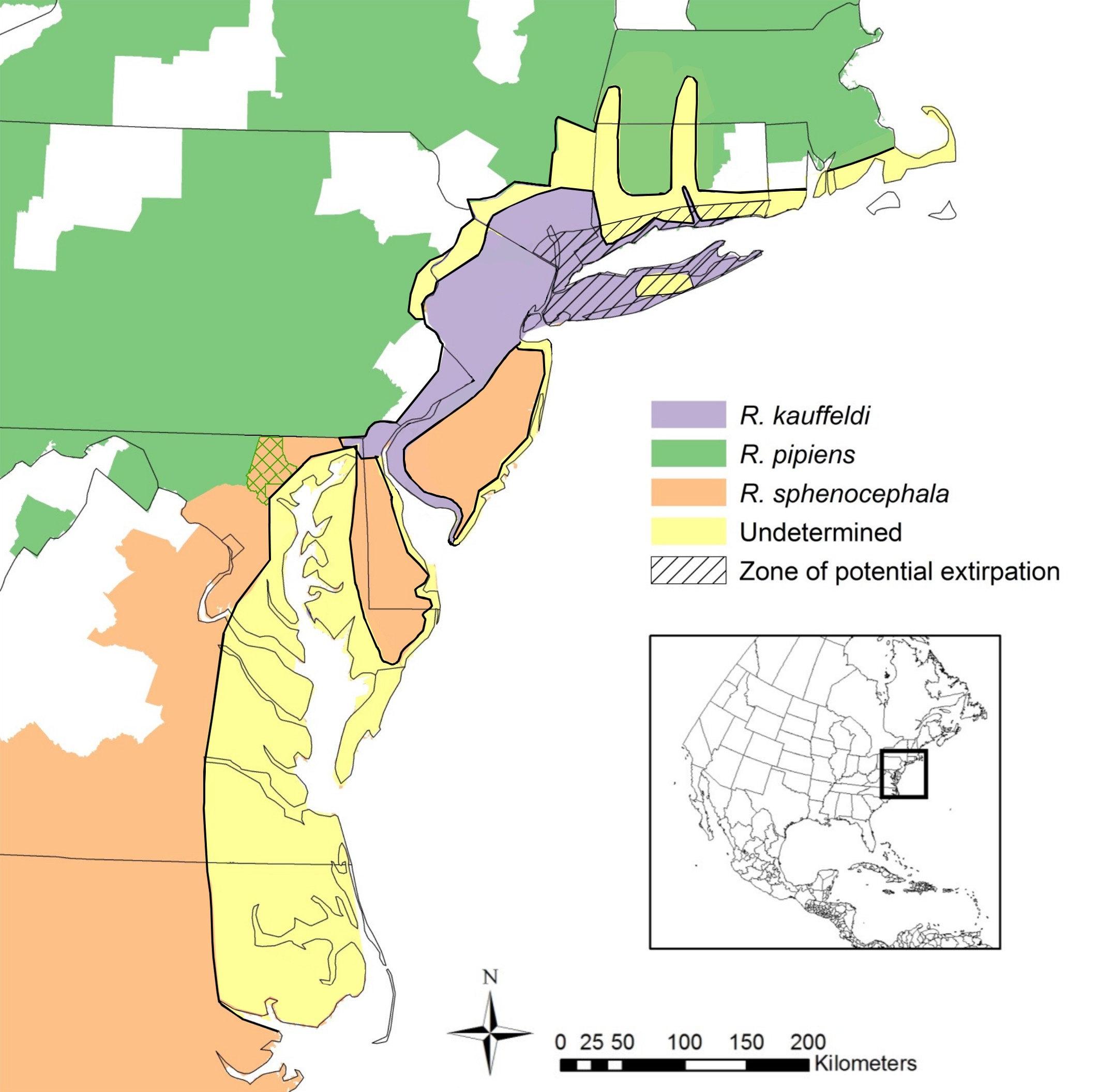 Atlantic Coast Leopard Frog distribution simplified.png