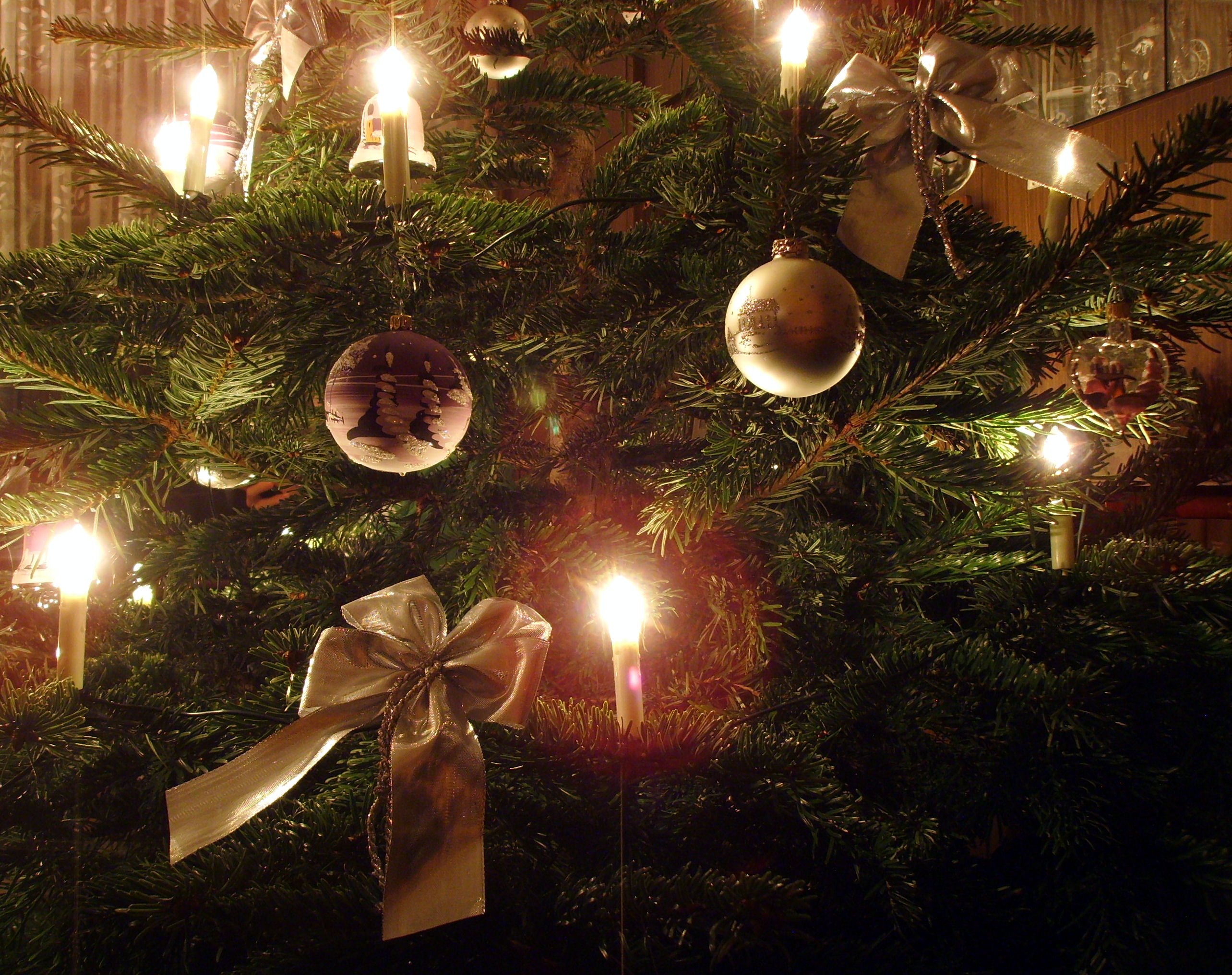 File:Candle on Christmas tree 6.jpg - Wikimedia Commons