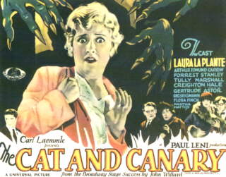 The Cat and the Canary (1927) movie poster