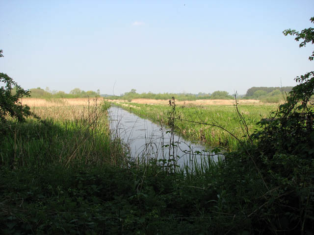 Church Marsh Nature Reserve - geograph.org.uk - 1280738