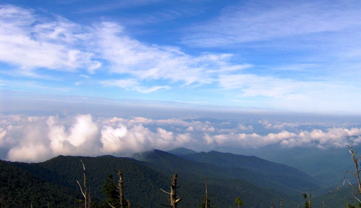 smoky mountains tennessee with File Clingmans Dome View South Nc1 on File Clingmans Dome View South Nc1 additionally Little Greenbrier  Great Smoky Mountains also Ober Gatlinburg besides Lure also Watch.