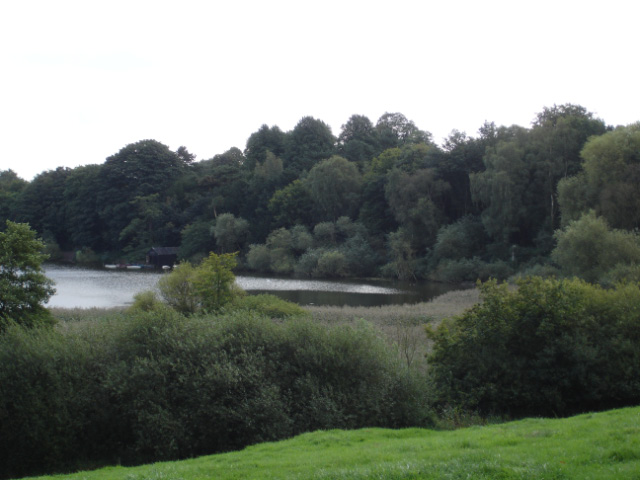 Comberbach-Marbury - view towards Budworth Mere - geograph.org.uk - 254703