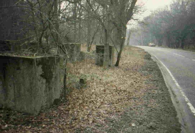 Concrete Anti Tank Blocks at Great Wood, near Northaw Hertfordshire. - geograph.org.uk - 91132