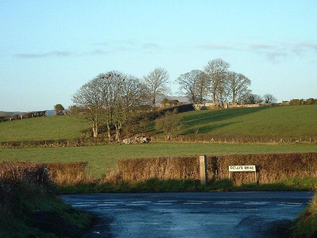 File:Dollysbrae Road - geograph.org.uk - 100732.jpg