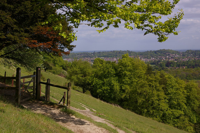 Dorking from Denbies Hillside - geograph.org.uk - 1290186
