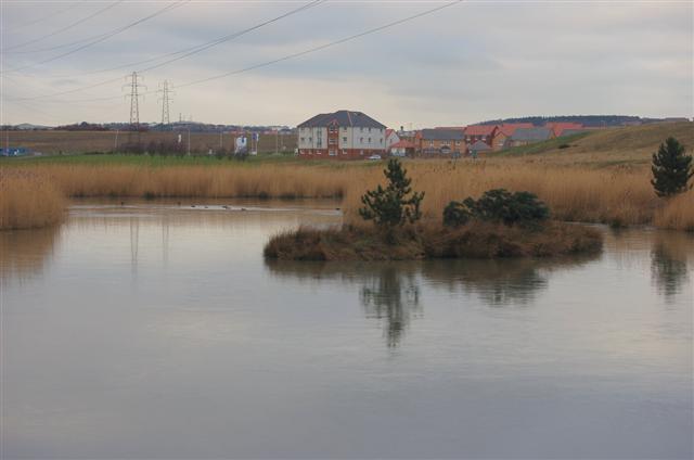 Drainage Pond - geograph.org.uk - 321679.jpg