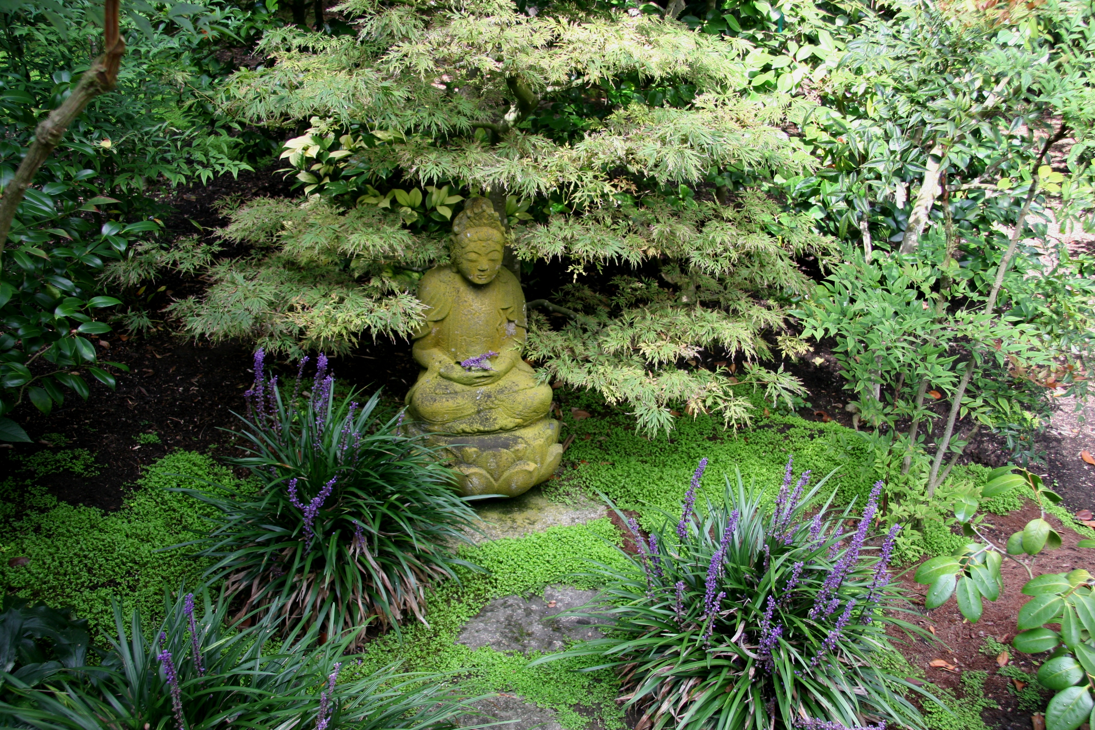 file flickr brewbooks buddha on lotus japanese garden wikimedia commons. Black Bedroom Furniture Sets. Home Design Ideas