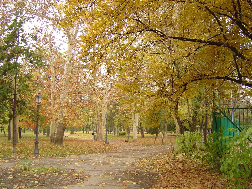 Gradski park Zemun jesen1.JPG