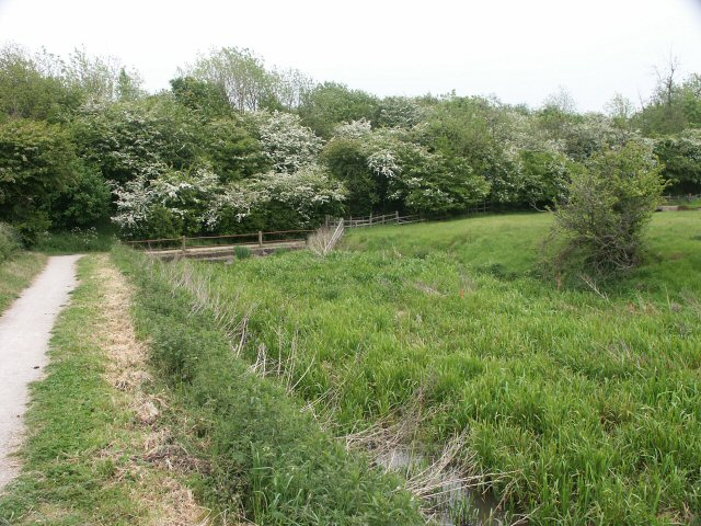 Grantham Canal obstacle - geograph.org.uk - 137284