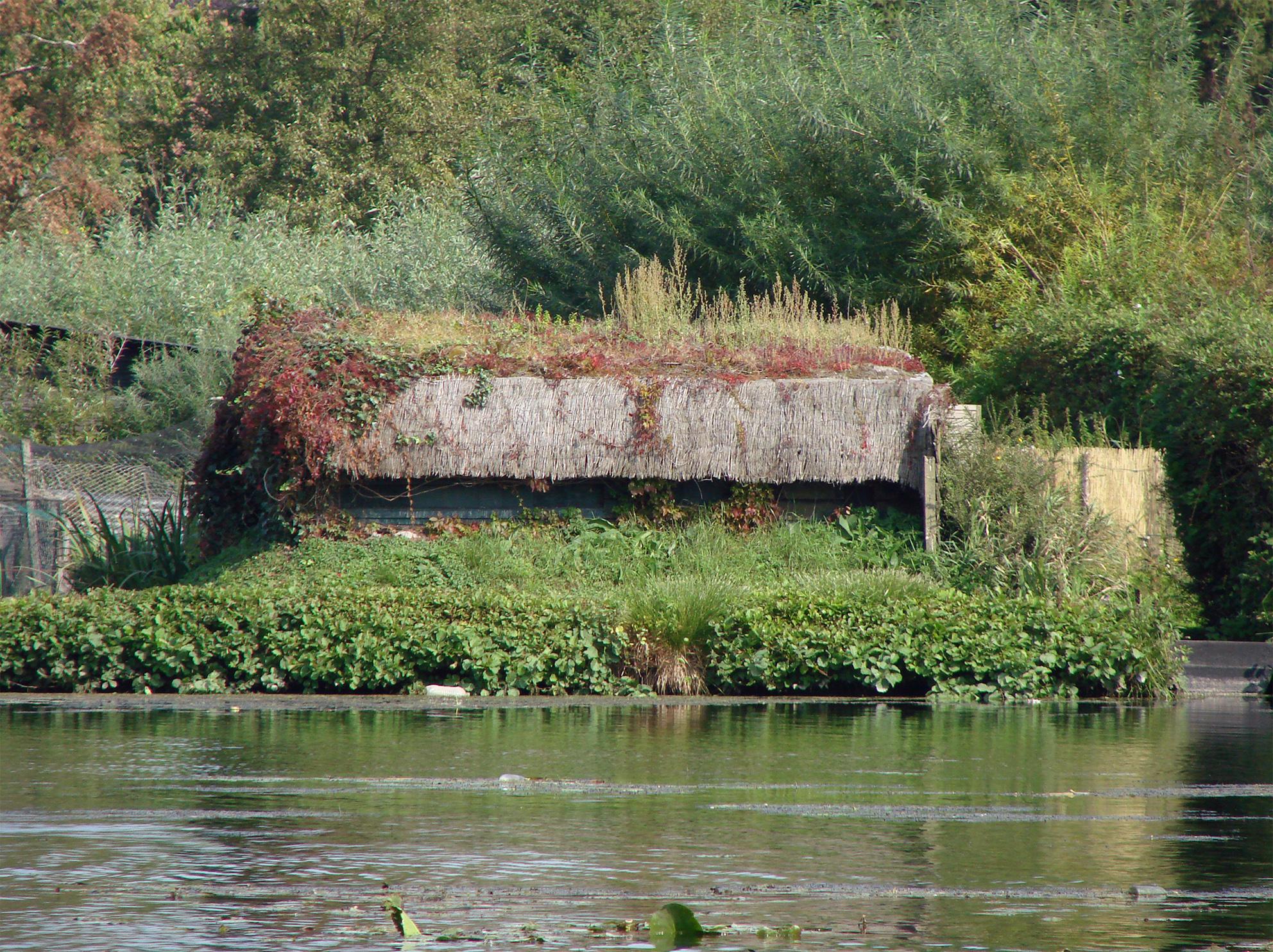File Hortillonnages d Amiens Etang de Clermont 4