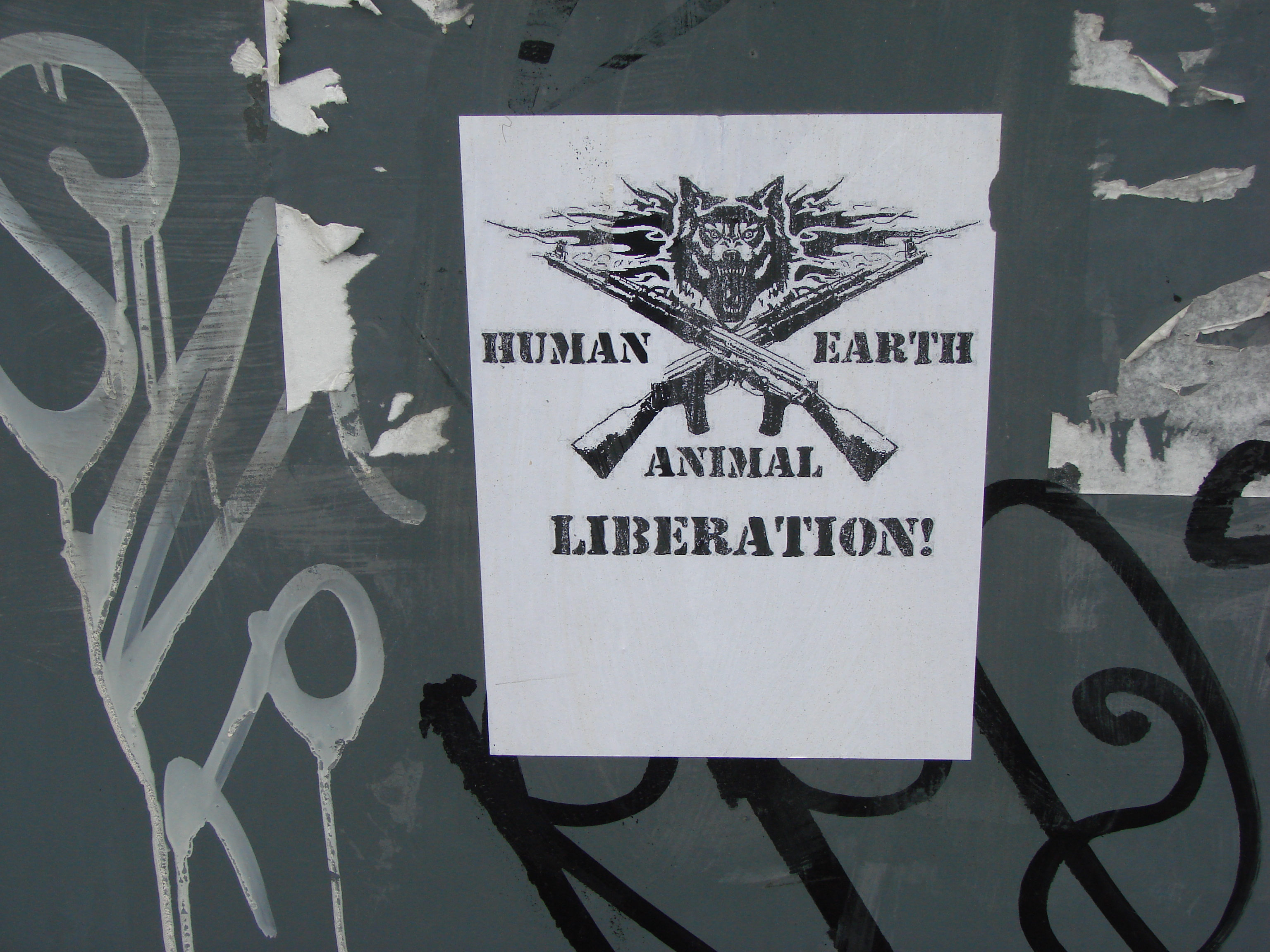 Image result for animal liberation