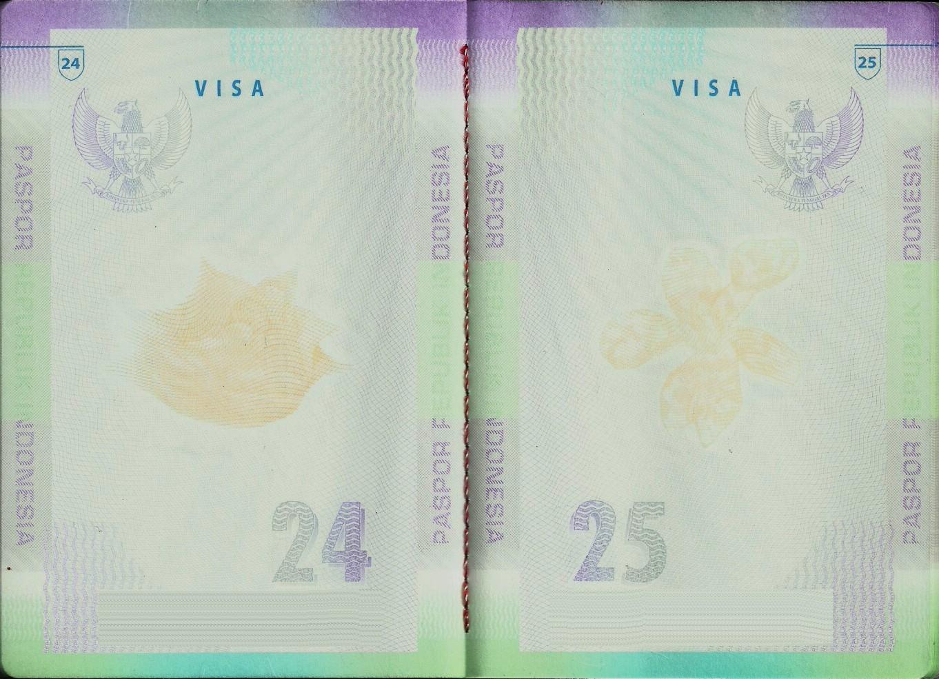 Passport photos visa pictures service by Passport Photo Indonesian passport photo size