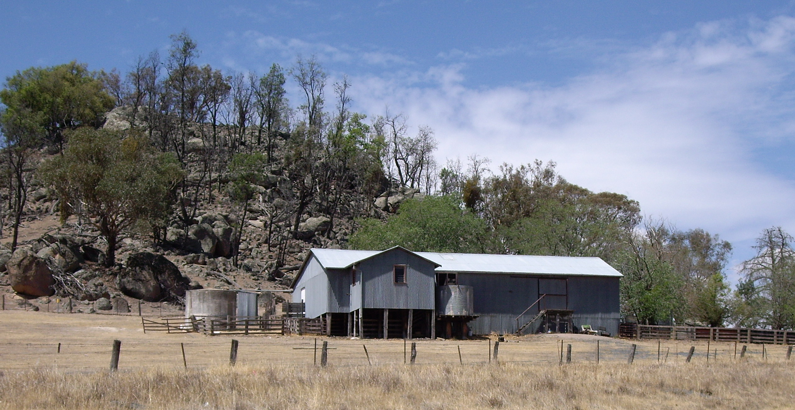 File:Kyeamba - Shearing Shed.jpg - Wikimedia Commons