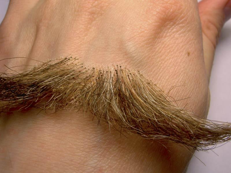 Прически для лобковых волос фото 31