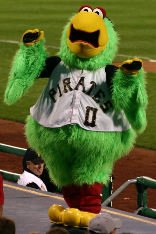 Pirate_parrot_pirates_mascot.jpg