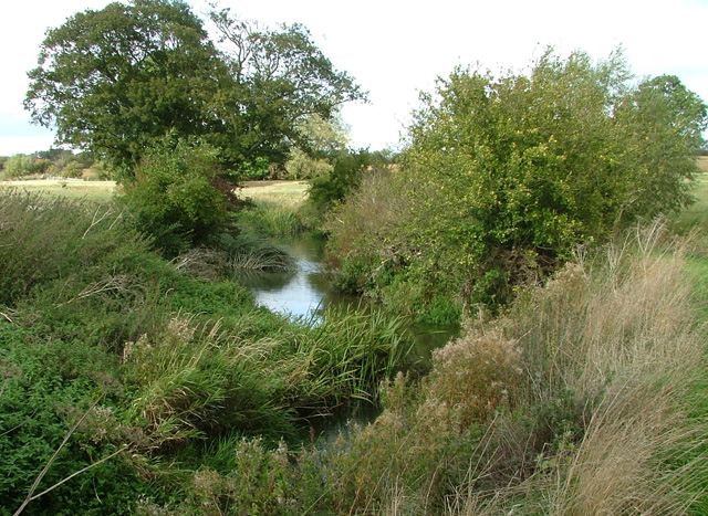 River Stour - geograph.org.uk - 59985