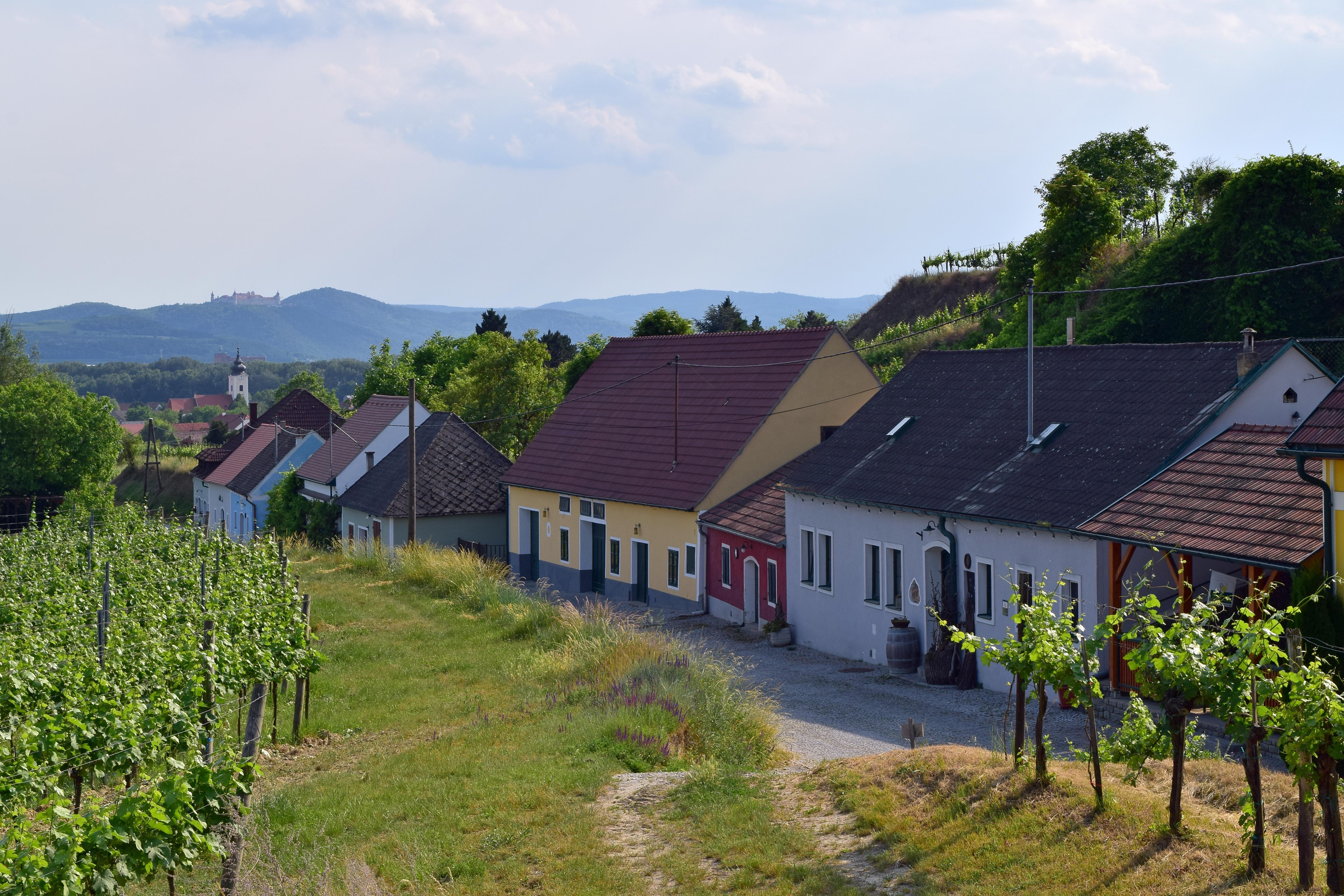 Gemeinde Rohrendorf