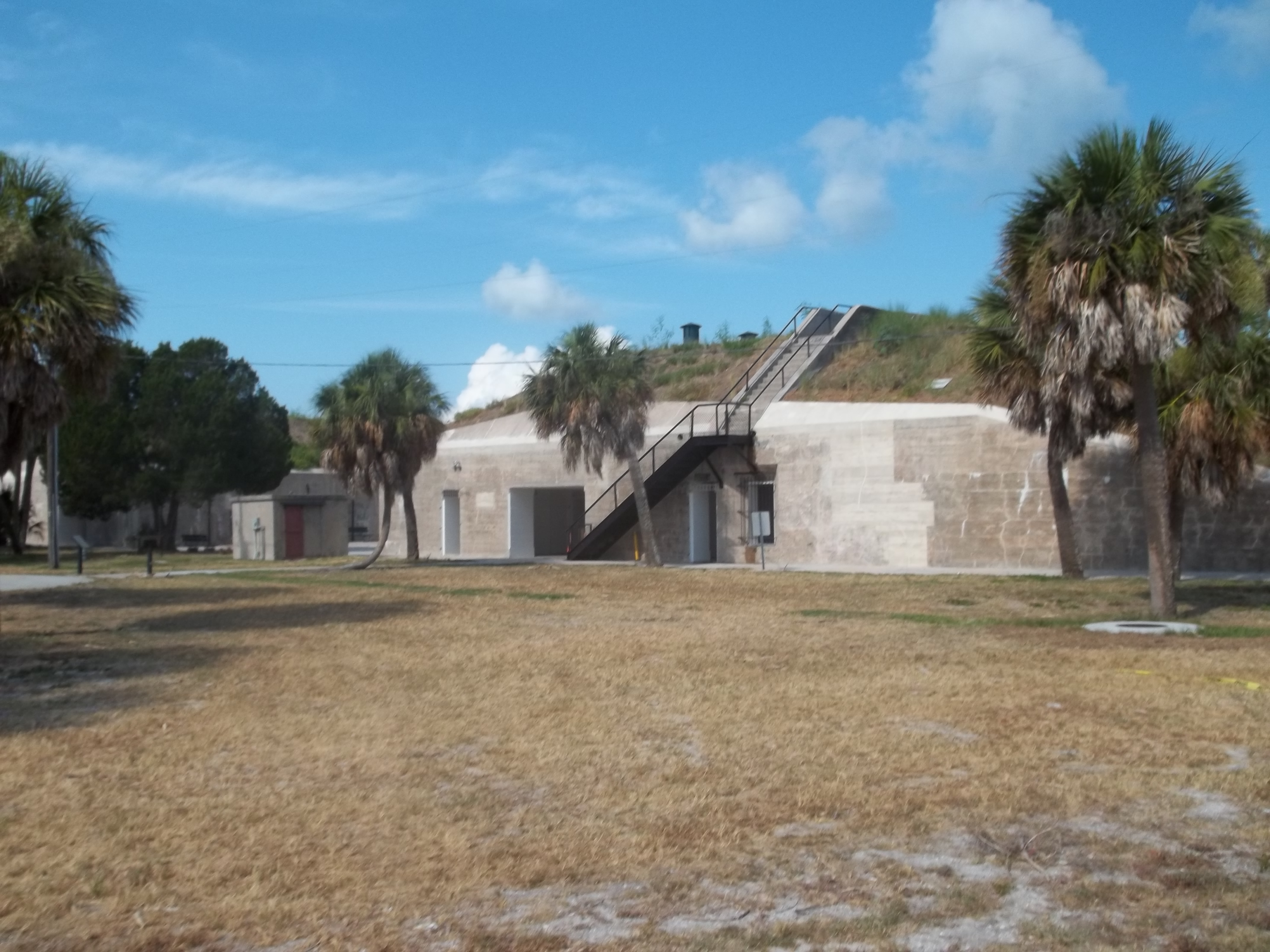St Petersburg Florida Museum Of Natural History