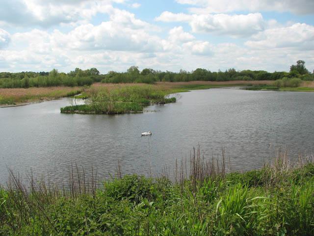 Surlingham Church Marsh Nature Reserve - geograph.org.uk - 1285247