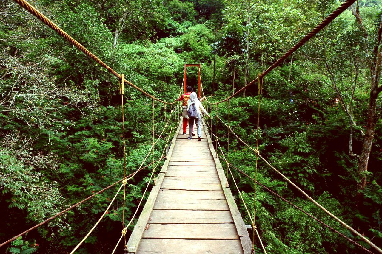 Taman hutan raya Ir. H. Djuanda yang cocok sebagai wisata pegunungan di Bandung
