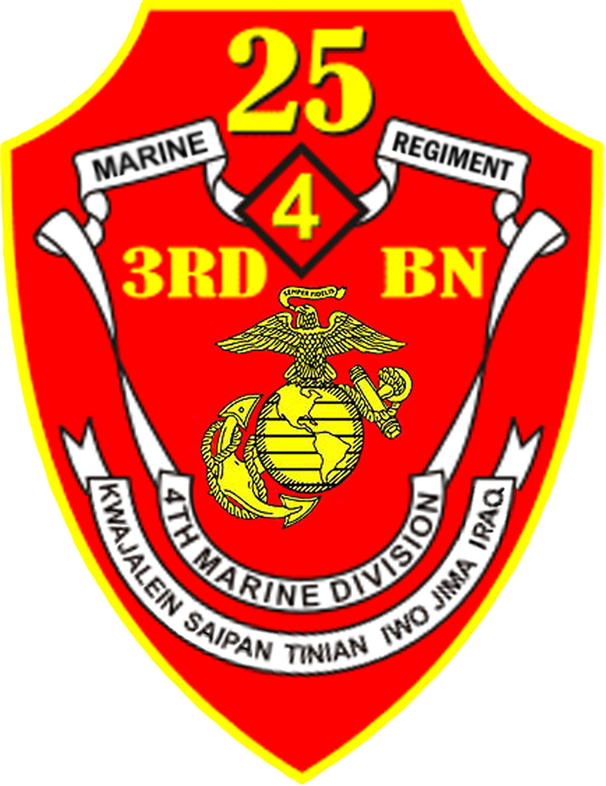 3rd Battalion 25th Marines Wikiwand