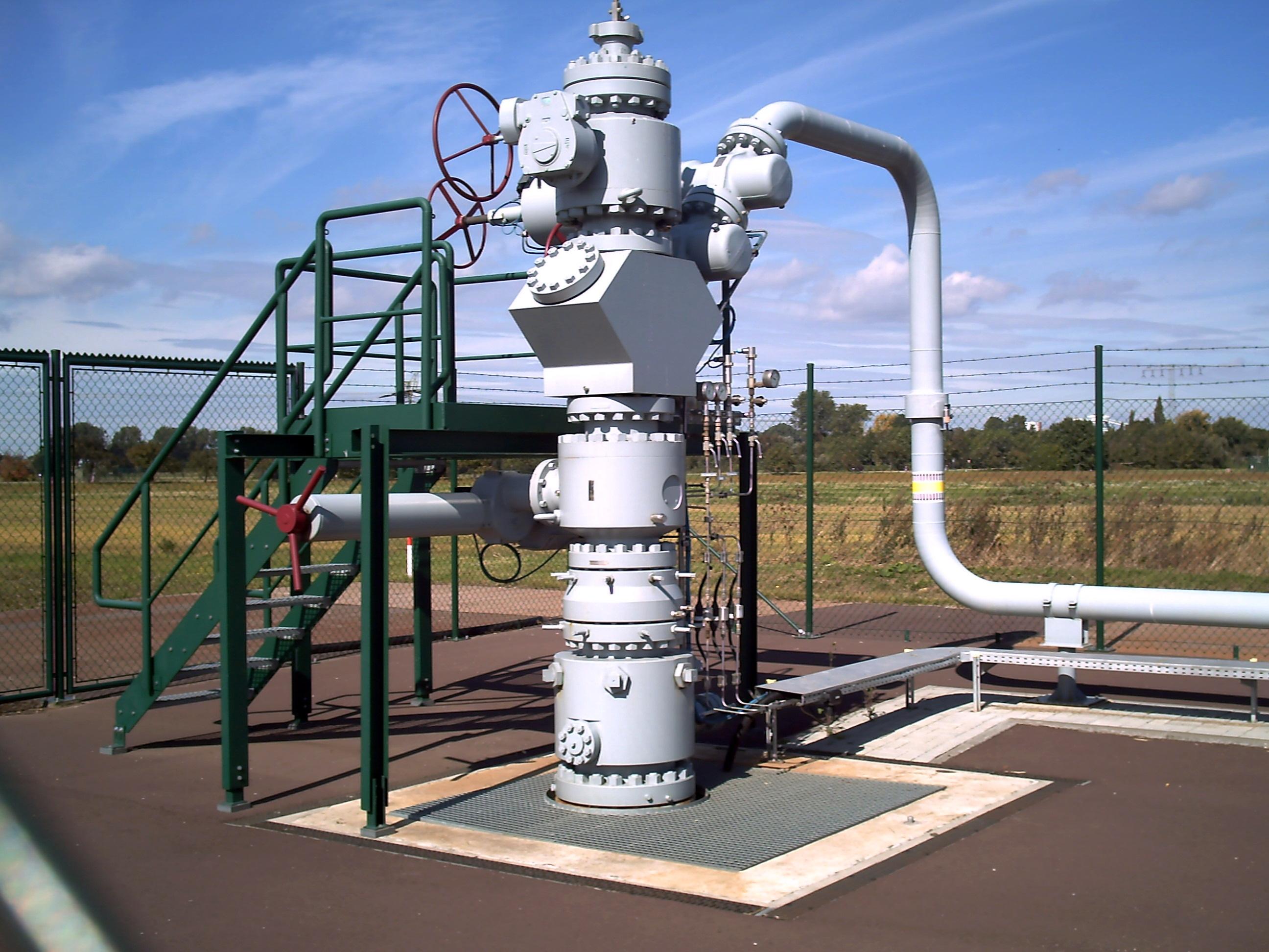 Wellhead Bohrlochkopf on Gas Lift Well Diagram
