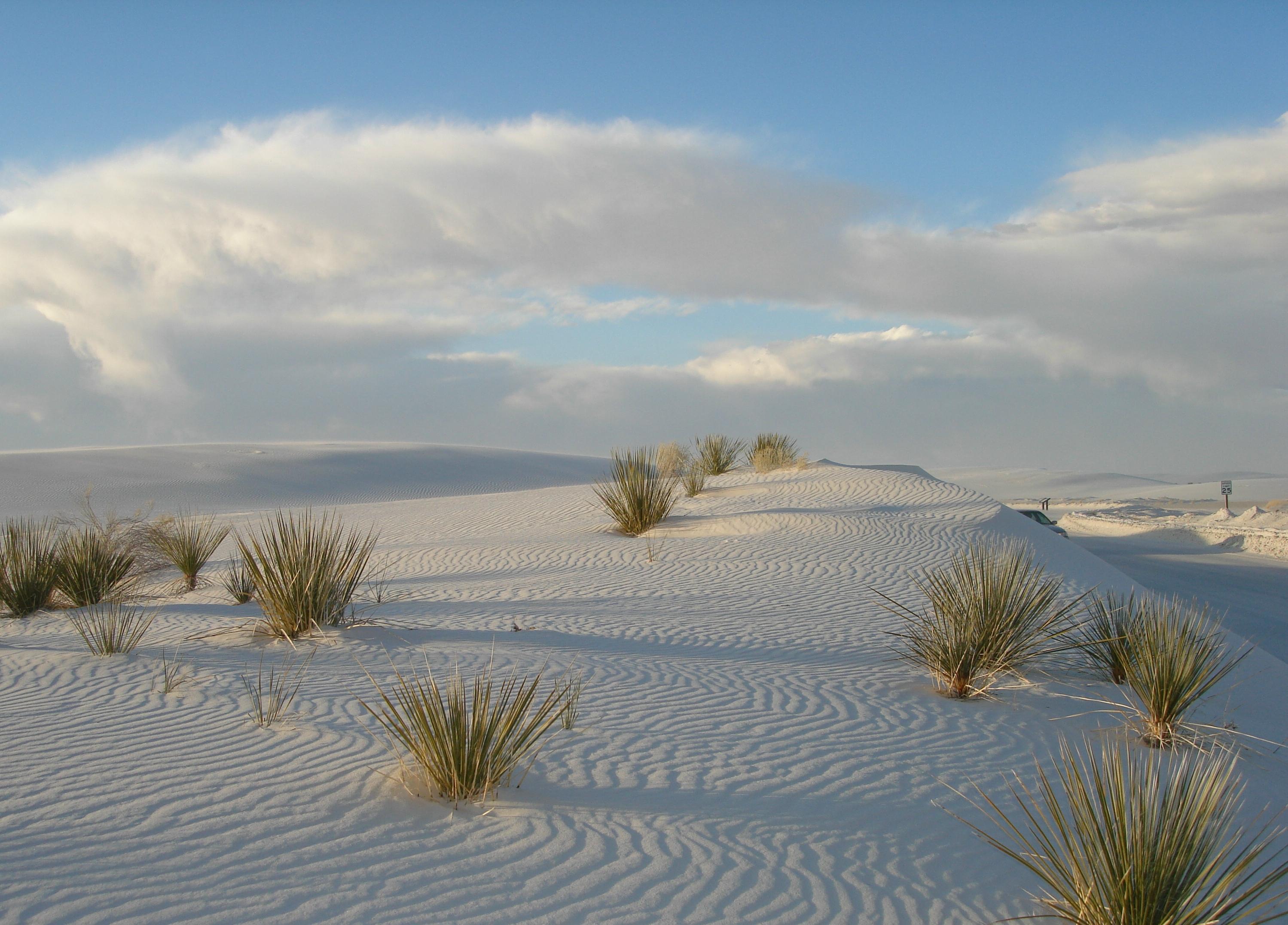 White Sand Beach South Coast Nsw
