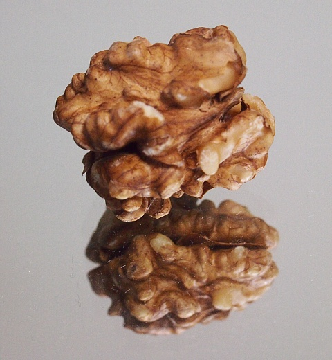 image of walnut