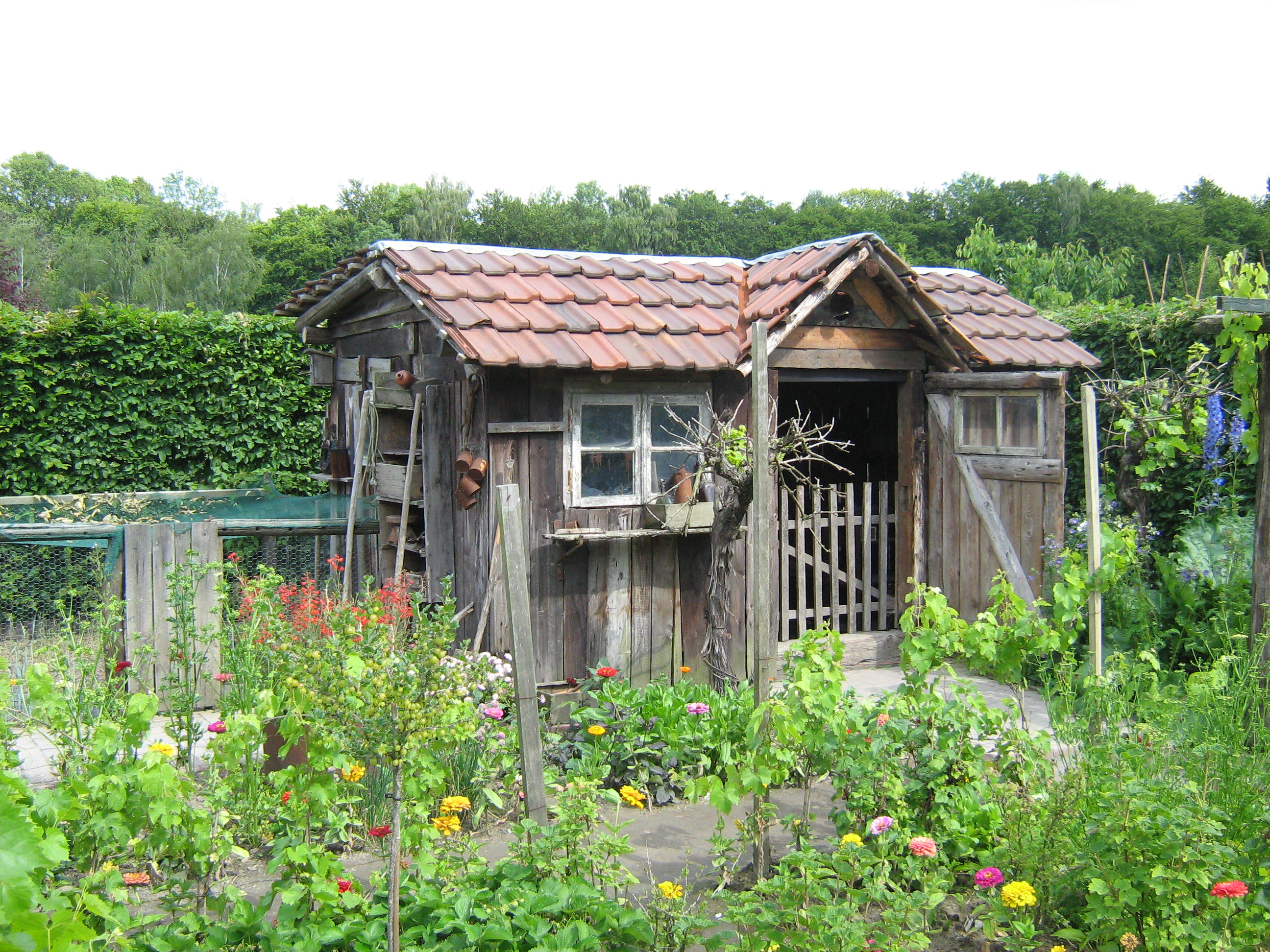 sauna de jardin en bois