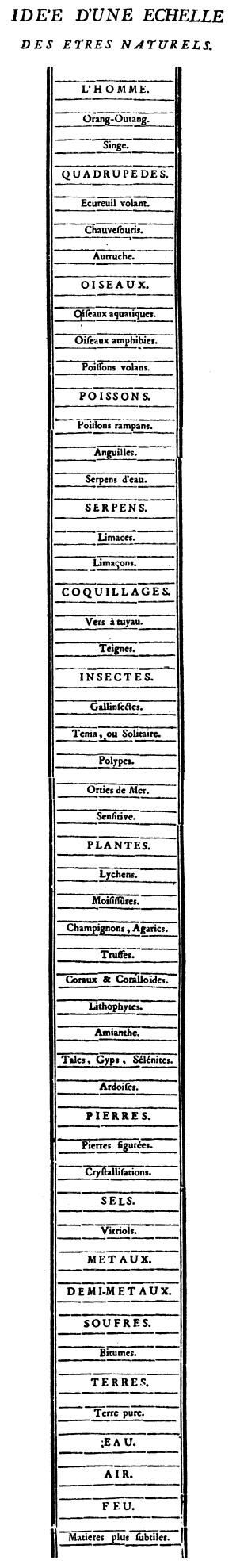 Chain of being from Traite d'insectologie, 1745 BonnetChain.jpg