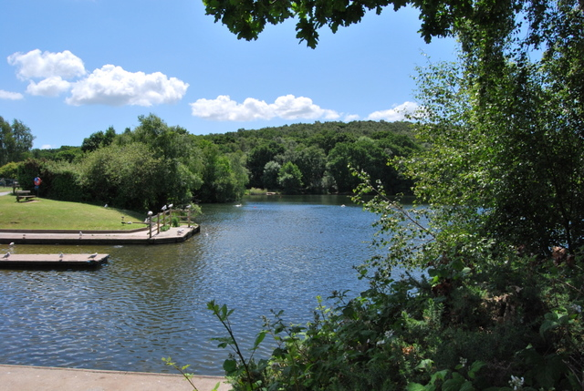 Decoy Country Park - geograph.org.uk - 1358474