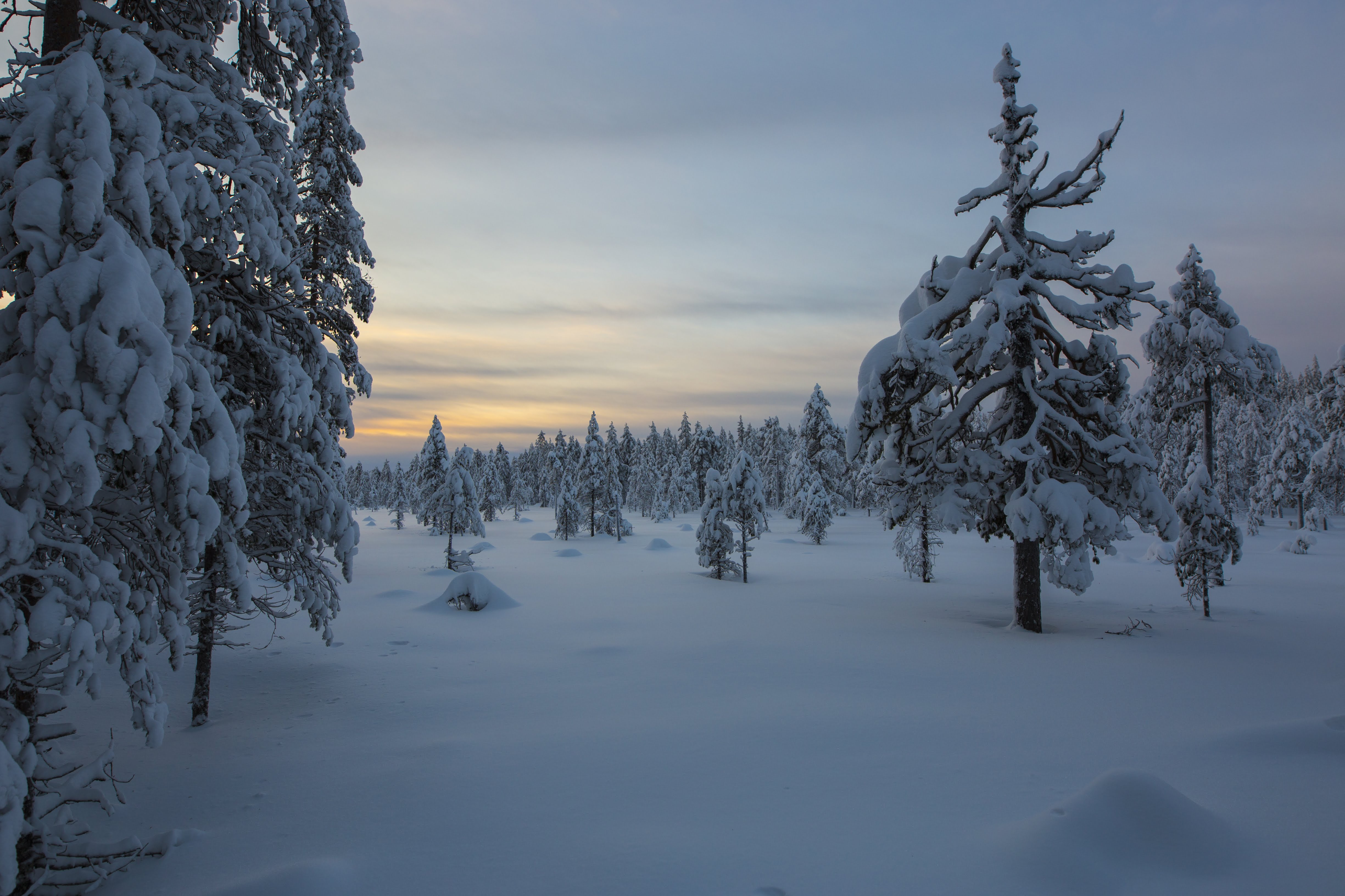 INFECTION CONTROL RULES FOR HAFJELL SUMMER 2020