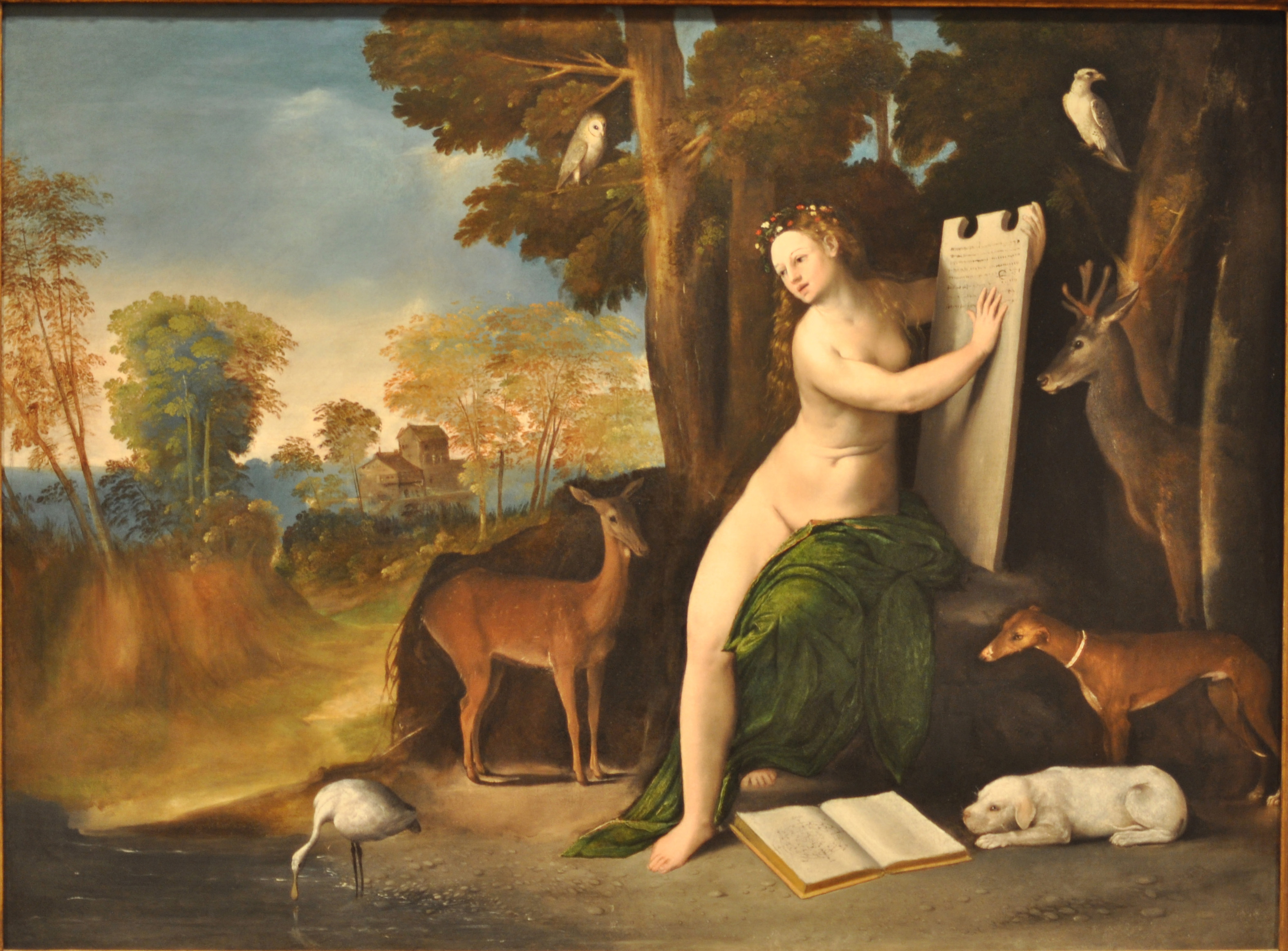 file dosso dossi circe and her lovers in a landscape     wikipedia