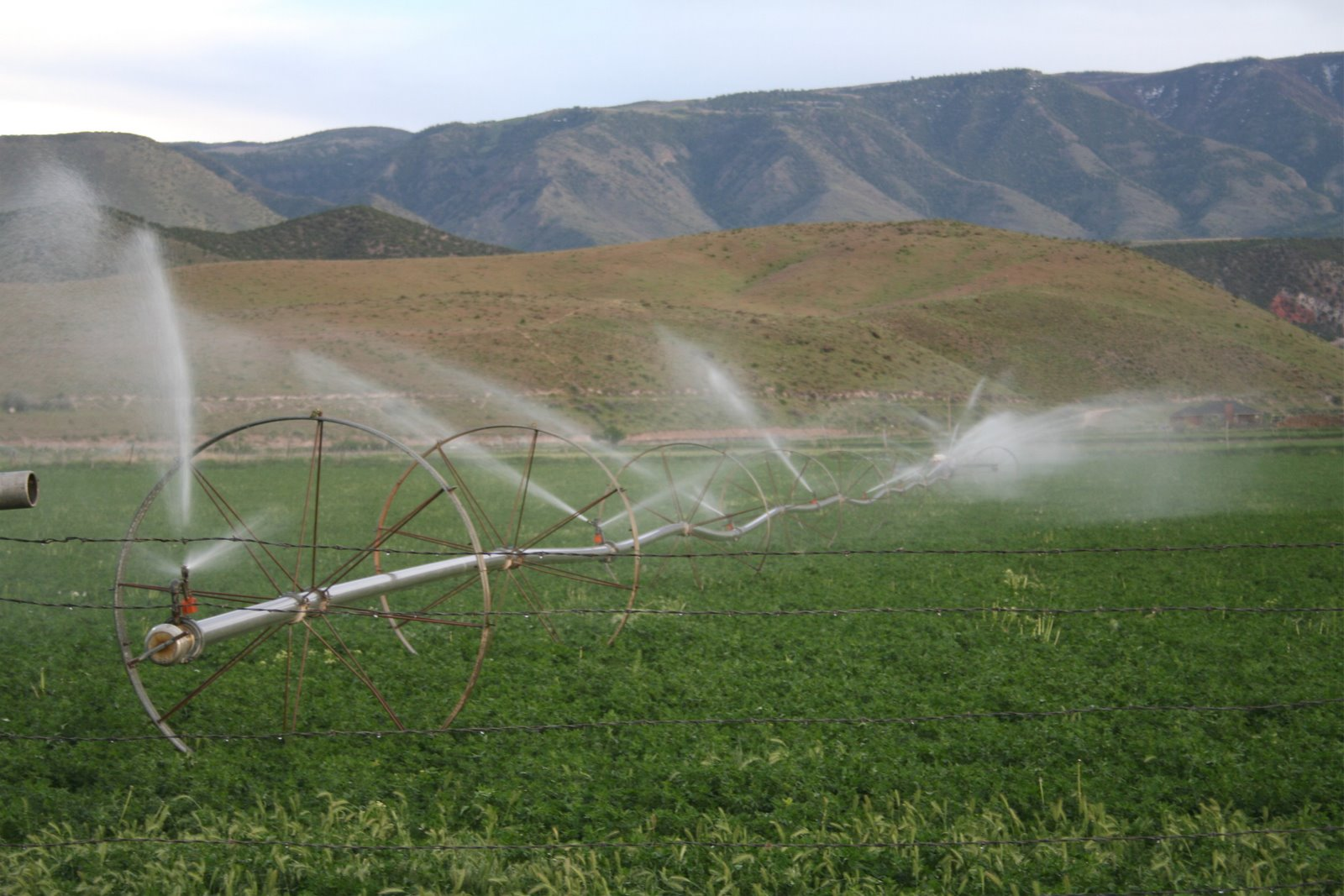 What is the irrigation system history essay
