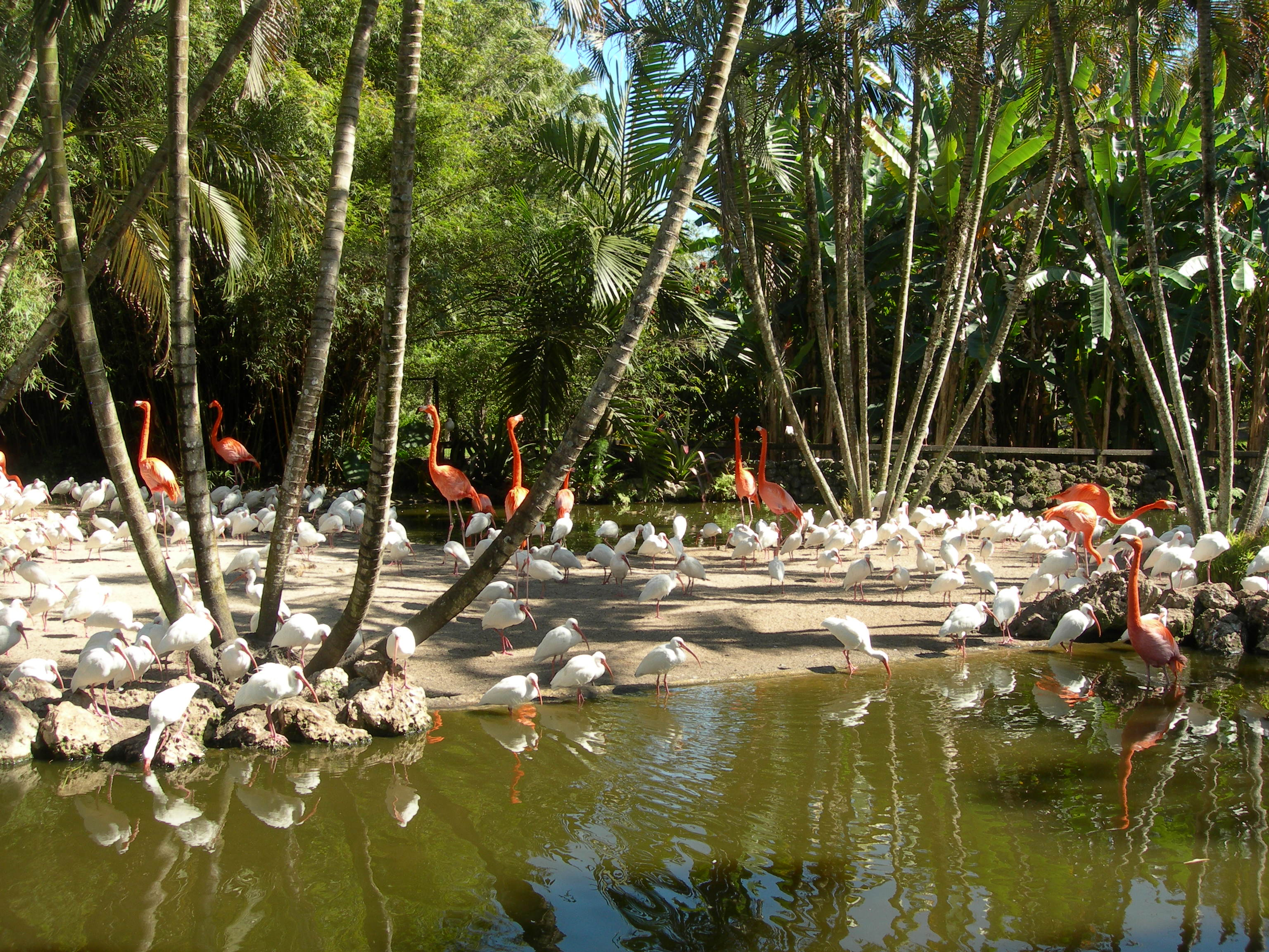 Flamingo Park South Beach