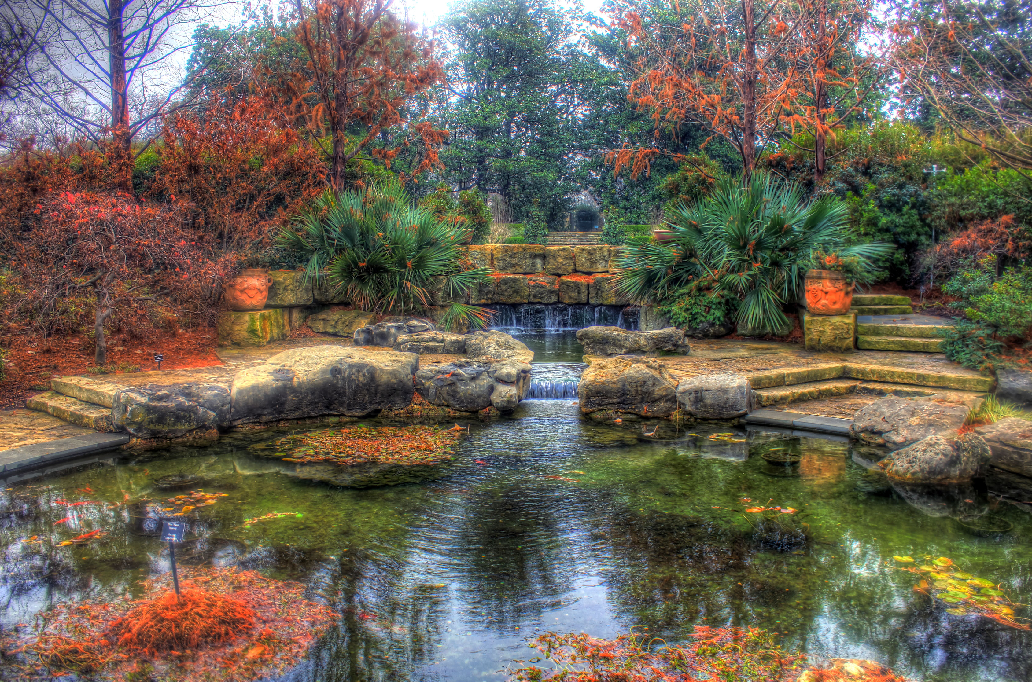 File gfp texas dallas pond landscape in for Pond landscape