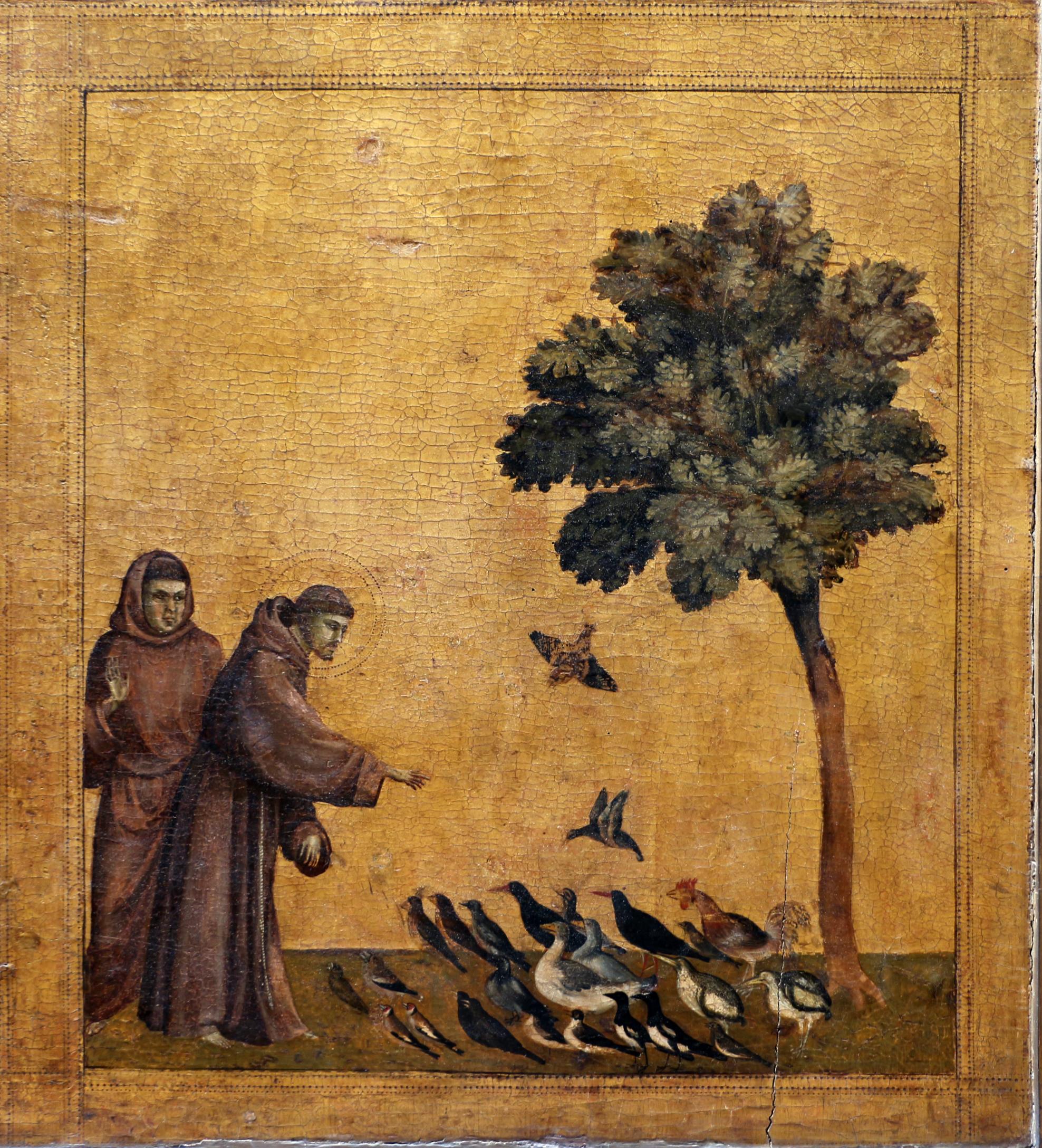 File:Giotto, predica agli uccelli, 1297-99 ca., 01.