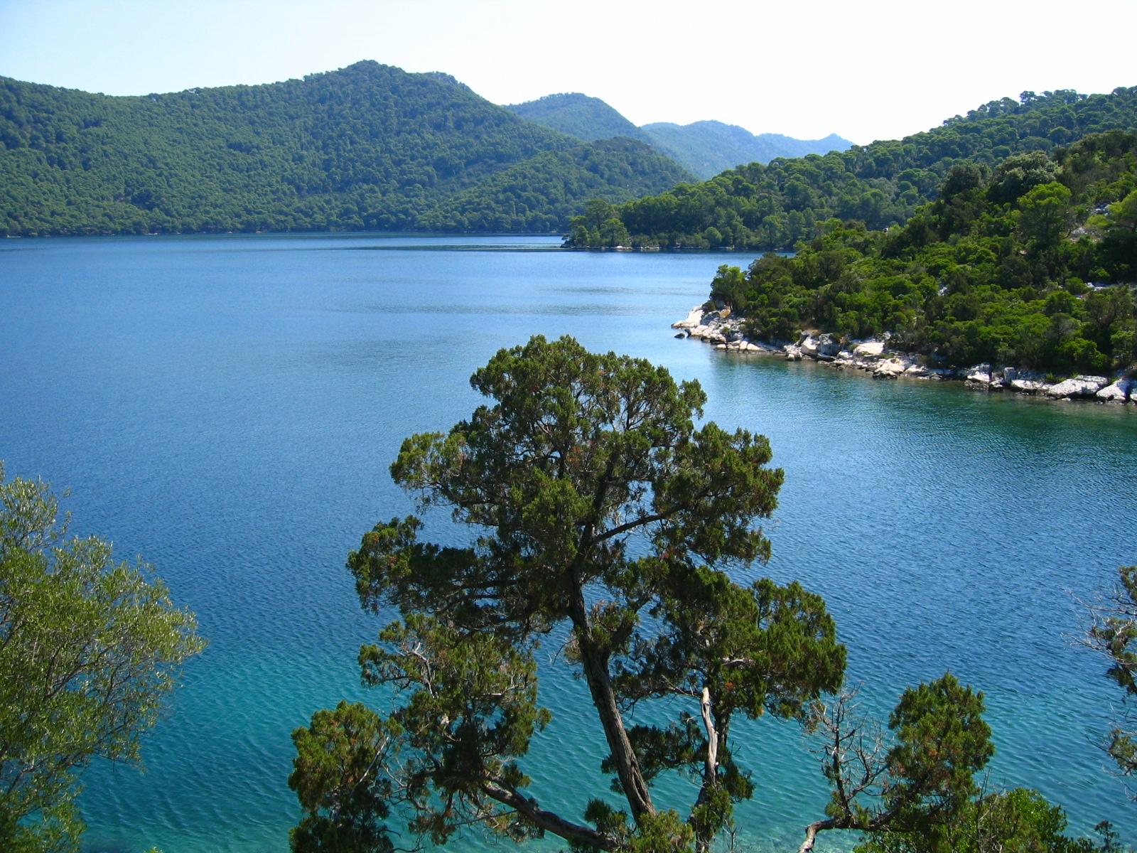 Illa de Mljet, Croàcia. Imatge: Neoneo13. Imatge de domini públic
