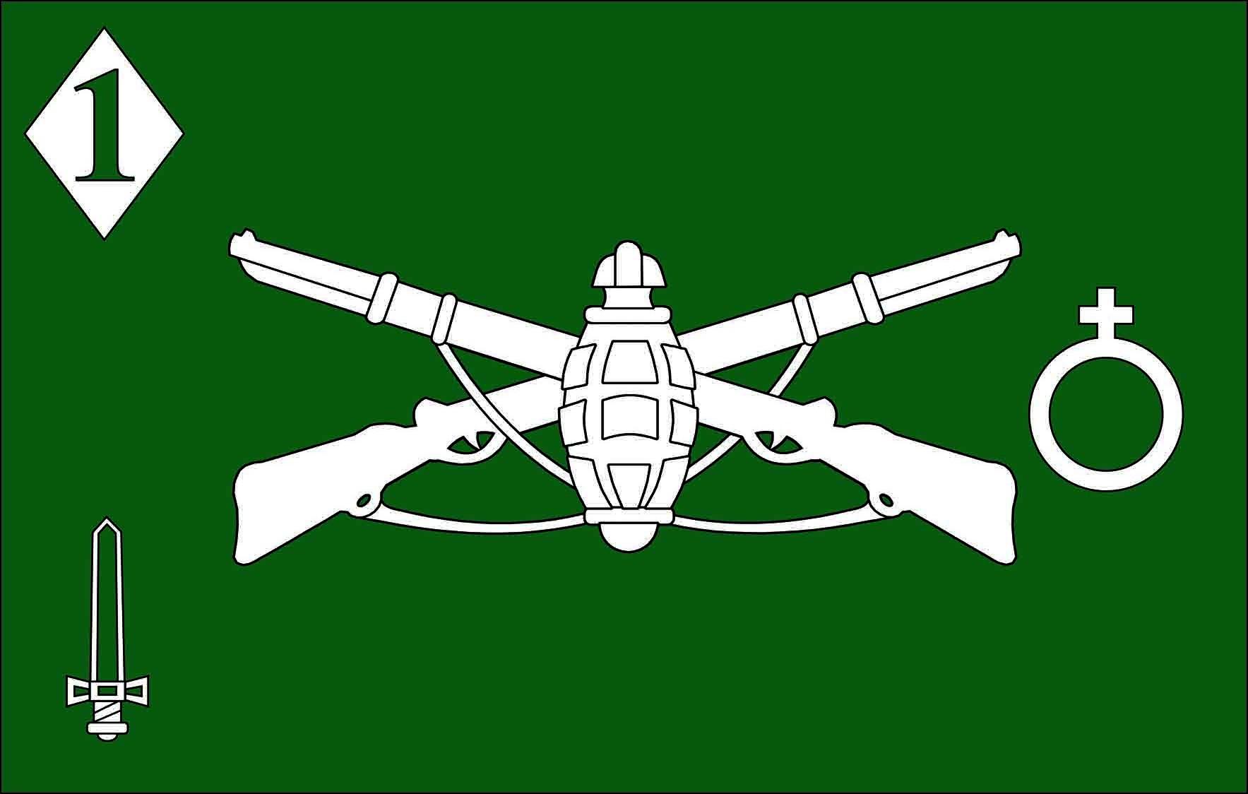 File:Insignia de Comando Cia C 1 DE.jpg - Wikimedia Commons