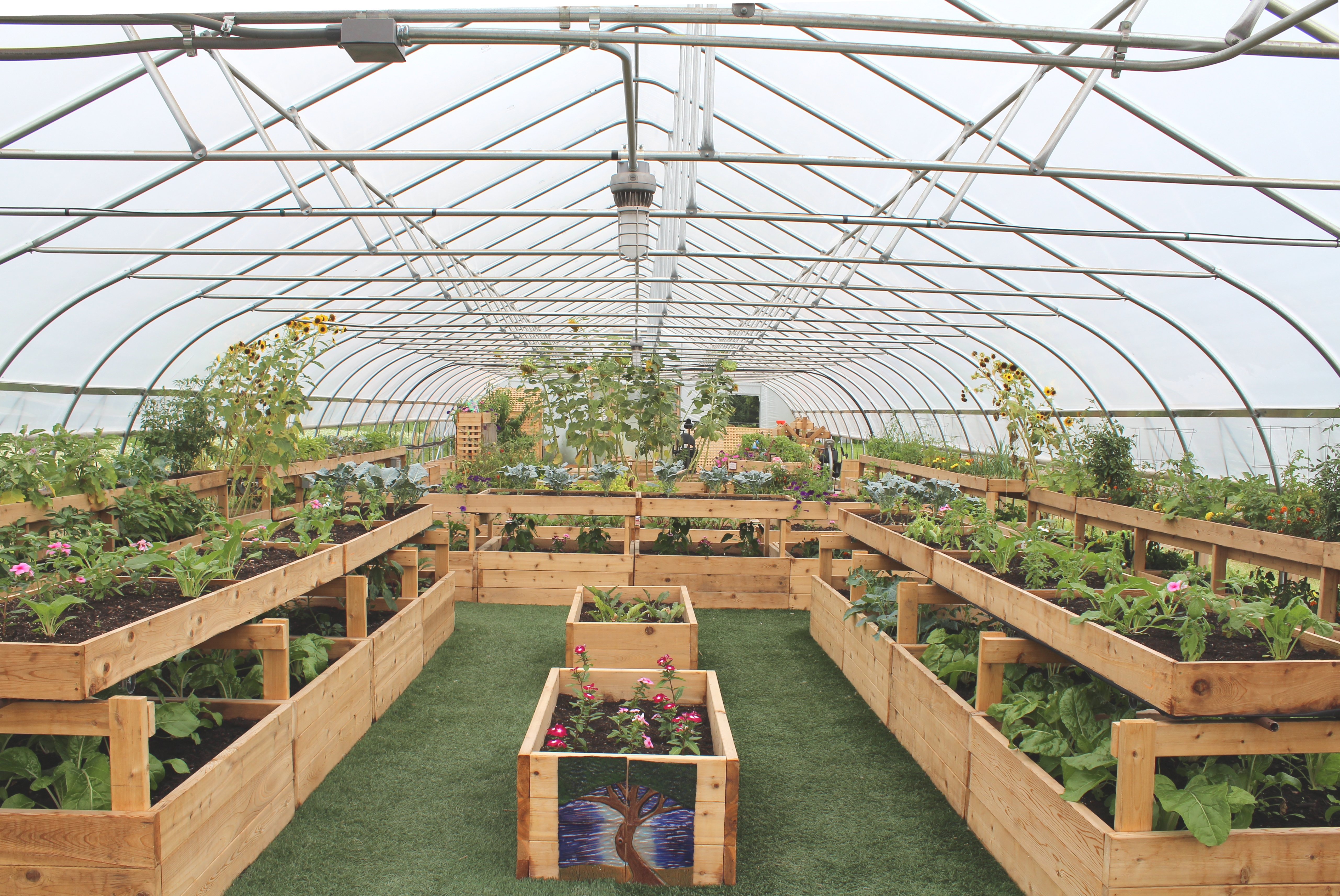 Interior of a Hoop House on the Farm at Saint Joe%27s%2C Superior Township%2C Michigan 2 - Download Small Greenhouse Interior Design Background
