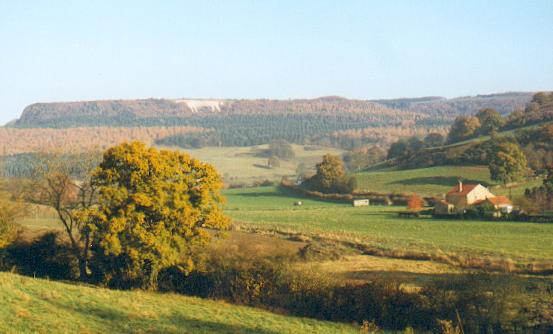 Kilburn White Horse - geograph.org.uk - 121528