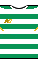 Kit body celtic20171801.png