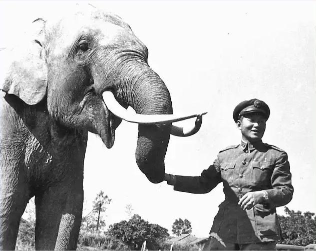 В этот день… 22 сентября – 2 слонов, причём, тысяч, Хантер, боевых, сказать, впрочем, прошлого, Справедливости, римлян, Ганнибал, успешно, жизни, примерно, отношения, перехода, через, изначально, Каннах, побьёт