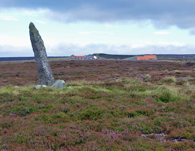 Little Blakey Howe - geograph.org.uk - 893178