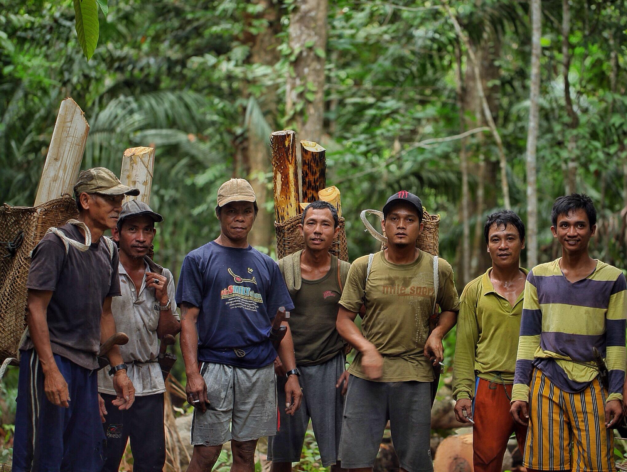 Berkas:Masyarakat Sungai Utik dan Hutan Adat Mereka.jpg ...
