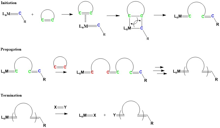 ring opening metathesis polymerization reaction Alternating ring-opening metathesis polymerization with kinetic control of alternation in the polymerization reaction 1 ' 2 recently, ring opening.
